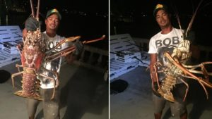 Video: Shocked Fisherman Catches Monster Lobster after Hurricane Nicole