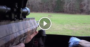 New AIR GUN takes deer down as good or better than a rifle