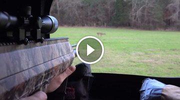 New AIR GUN takes deer down as good or better than a rifle