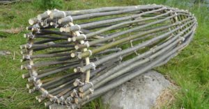 Make your very own primitive survival fish trap