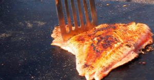 Speedy fishermen take salmon from stream to grill in under a minute