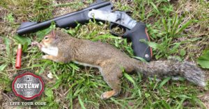 Home-made squirrel call costs 50 cents, works better than anything you'll find in a store
