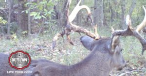Hunter films himself shooting an arrow into a buck's antlers