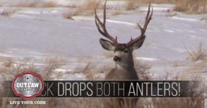Shed hunters record a buck dropping both antlers at the same time
