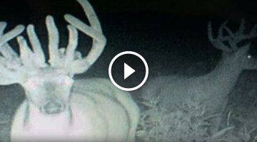 Hunter lands unbelievable 22-pointer. But then he notices something he NEVER expected