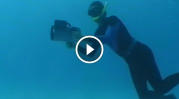 Diver's in trouble when a hammerhead shows up, but a stranger arrives suddenly to PROTECT him