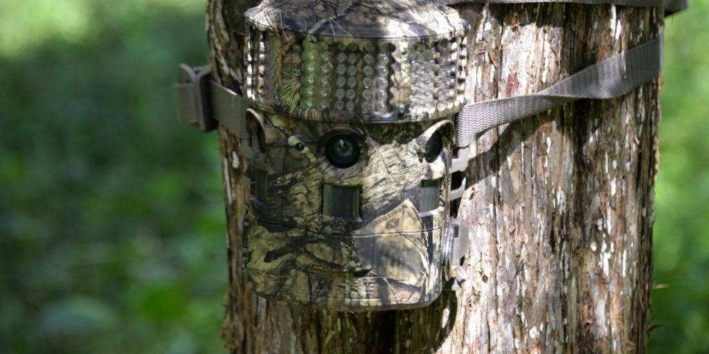 Deer Hunting Trail Camera Tips