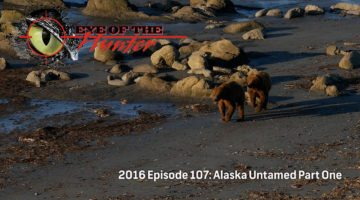 Eye of the Hunter: Alaska Untamed – Episode 1