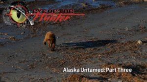 Eye of the Hunter: Alaska Untamed – Episode 3