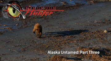 Eye of the Hunter: Alaska Untamed – Episode 3