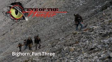 Eye of the Hunter: Bighorn – Episode 3