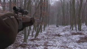 Sharpshooter takes out entire sounder of boars one hog at a time