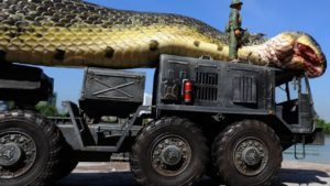 Video: MONSTROUS Snake Caught in the Red Sea