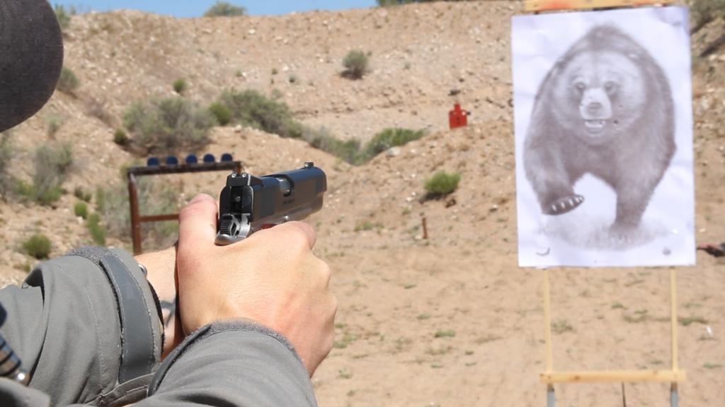 Kimber Camp Guard 10mm 3
