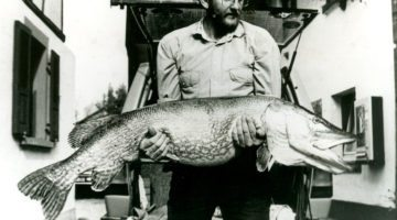 7 of the Largest Fishing World Records in History