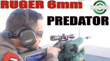1000 Yard Gun For Under $500!? | The Ruger American Predator 6mm