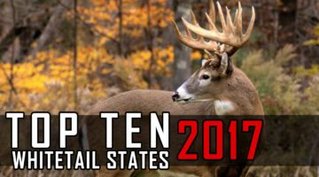 Top Ten Whitetail States For 2017