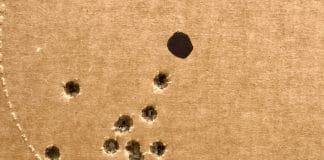 gun target shots