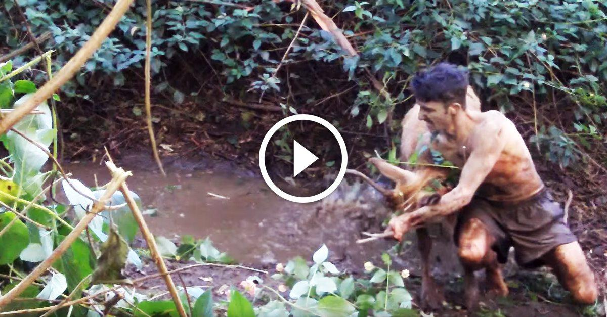 This guy uses his bare hands to catch wild animals and it's