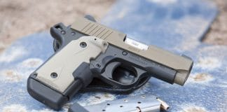 guns, handgun, 9mm, kimber, kimber micro 9