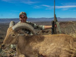 Hunting, getzone hunting, budget hunting, budget friendly hunting, aoudad