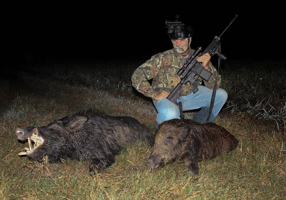 Hunting, getzone hunting, budget hunting, budget friendly hunting, feral hogs