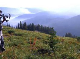hunting is conservation, rocky mountain elk, rocky mountain elk hunting, rocky mountain elk conservation, hunting and conservation,
