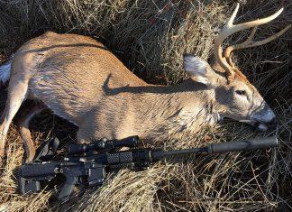 whitetail deer hunting, deer, hunting, getzone hunting, whitetail