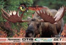 MOOSE_eye-of-the-hunter-tahltan-adventures