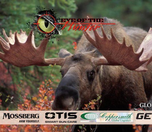 MOOSE_eye-of-the-hunter-tahltan-adventures