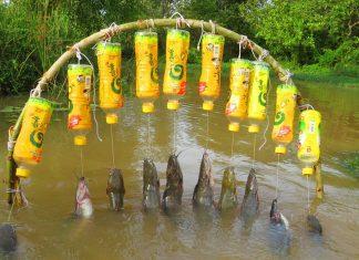 diy fishing trap, fishing