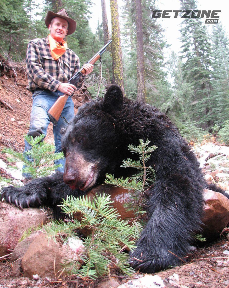 bear hunting California black bear