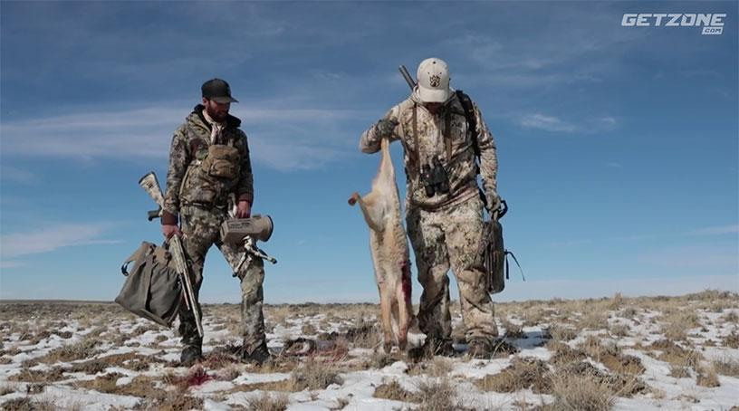 wyoming coyotes