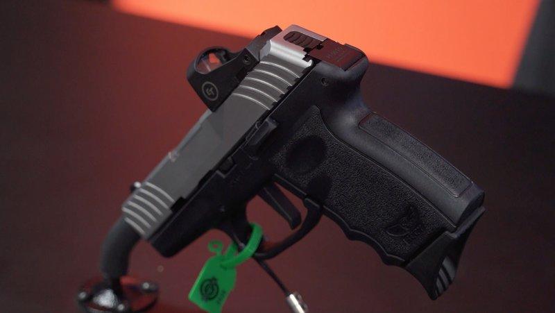 dvg-1 pistol