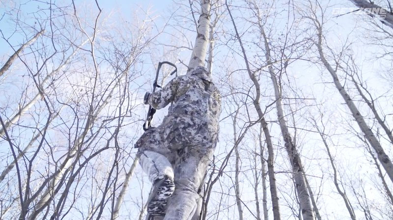 treestand height