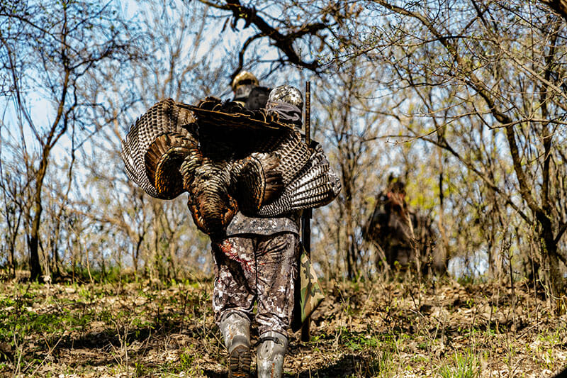shot placement for turkeys