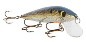 4_trout fishing baits