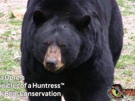 Chronicles-of-a-Huntress-Black-Bear-hunting