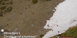 Chronicles-of-a-Huntress-Chamois-conservation