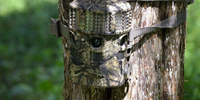 Deer Hunting Trail Camera Tips