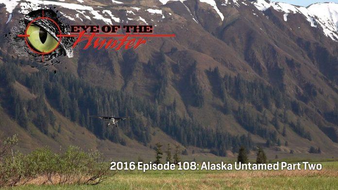 Eye of the Hunter Alaska