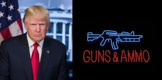 Firearm Inventory
