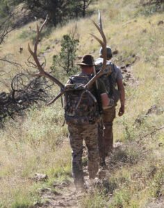 Novice's Guide to Elk Hunting - Hunters hiking with Elk Prize