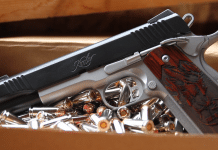 Kimber Camp Guard 10mm 1