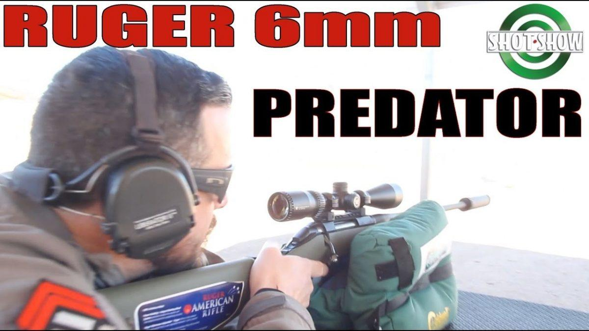 Ruger American Predator in 6mm
