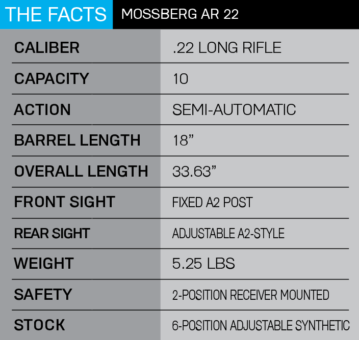 Mossberg AR 22 4