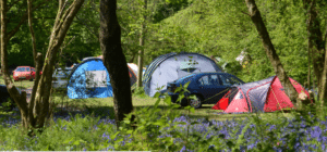 kingsmead centre camping site