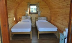 whitlingham broad campsite 2