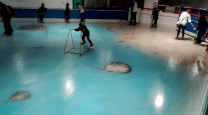 ice skating rink with frozen fish