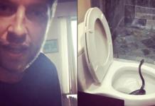 brett Eldredge toilet snake
